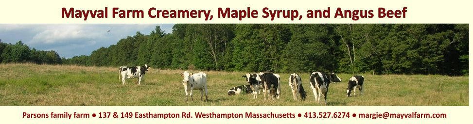 maple syrup and cows at Mayval Farm